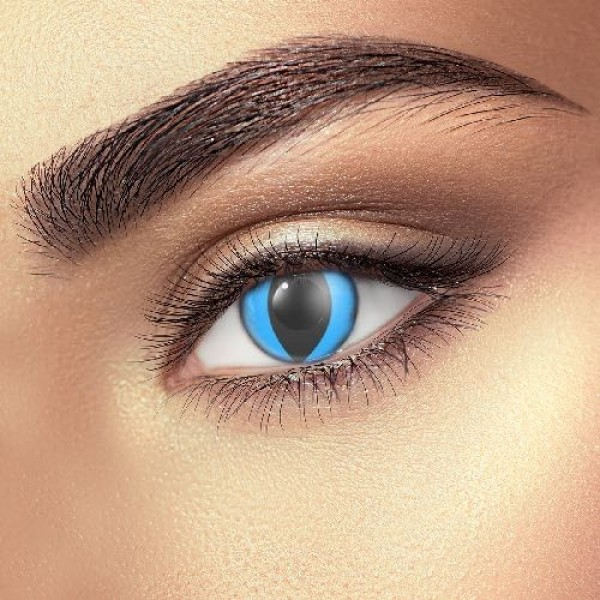Blue Cat Eye Accessories (Pair)